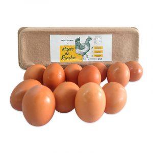 Huevo de Rancho Libre Pastoreo