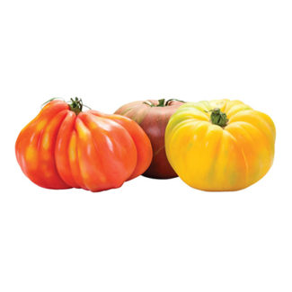 Tomate Heirloom