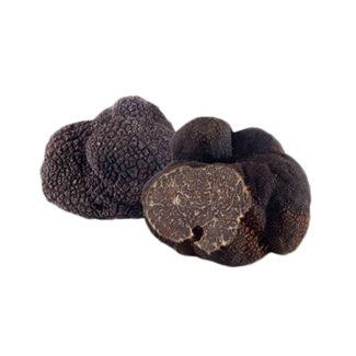 trufa-negra-invierno