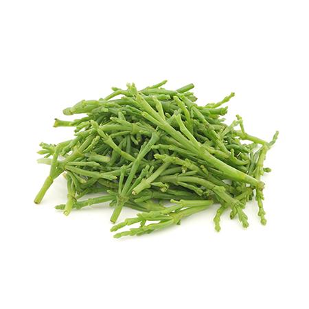 Salicornia Fresca, 100g