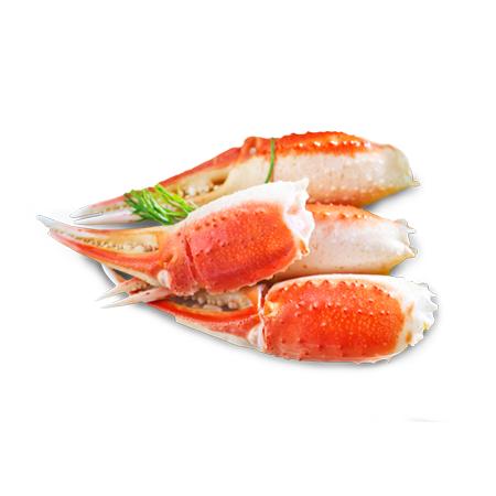 Tenazas de Snow Crab