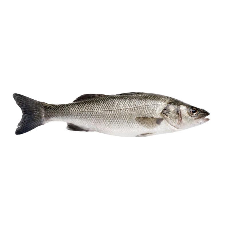 Branzino entero congelado ingredienta - Cocinar pescado congelado ...