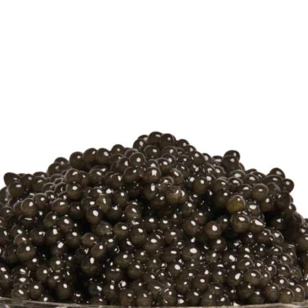 Caviar American Paddlefish