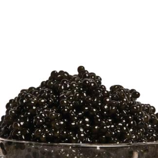 Caviar Hackleback Sturgeon