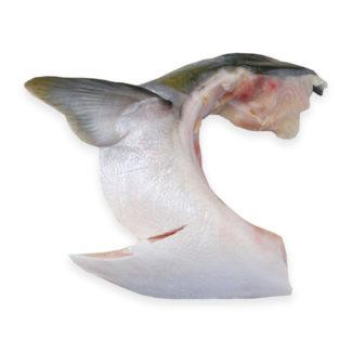 Hamachi Kama (cuello de hamachi)