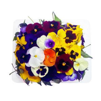 flores_comestibles