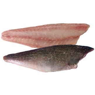 pescado-conejo-lomos