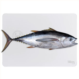 atun-big-eye-entero-800-web