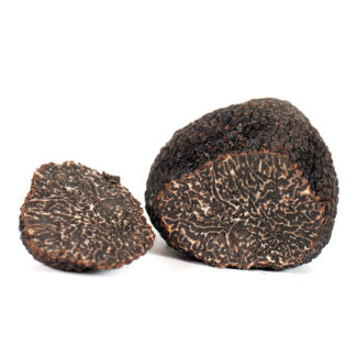 black truffles (tuber melanosporum) in front of a white background